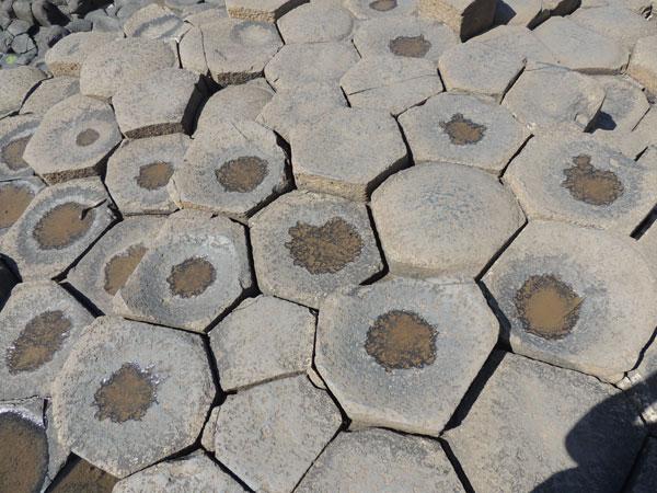 hexagonal rocks at the causeway