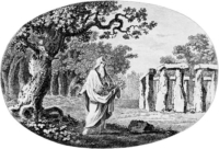celtic and irish druids