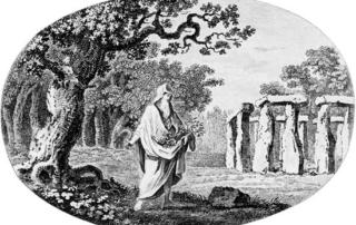 celtic and irish druids