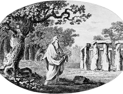 The Druids of Irish and Celtic Culture