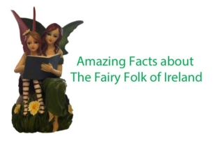 facts about the fairy folk in ireland
